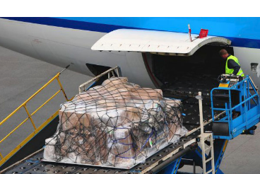 Commercial Freight Service - air cargo handling