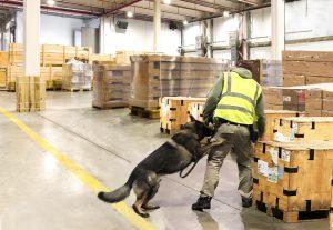 CFS Canine Air Cargo Screening