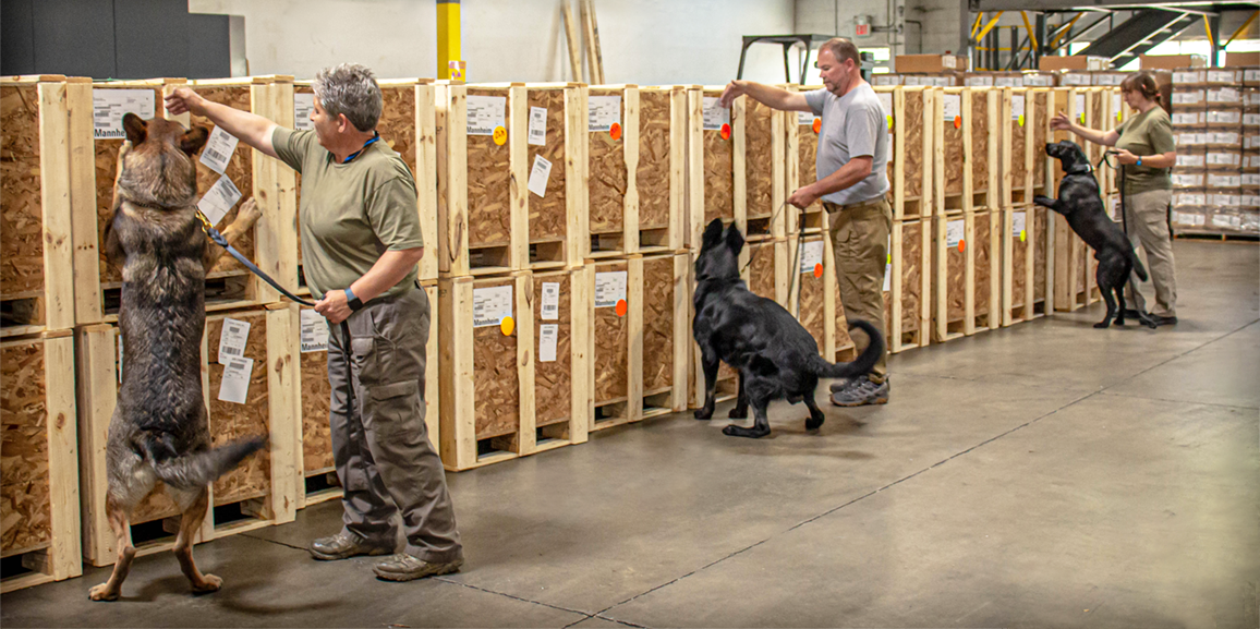 K9 all-cargo screening in Detroit – are you ready?